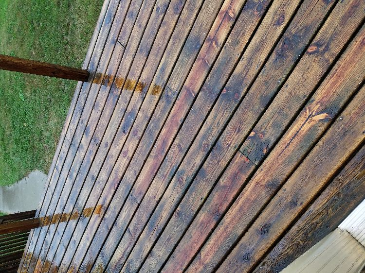 deck renewed with tung oil